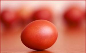 яйце 2